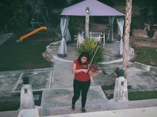 Perfect violín y guitarra Salvia Ibarra