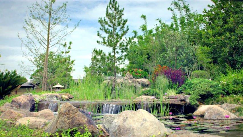 Jardines de m xico jardines de m xico video - Jardines mediterraneos fotos ...